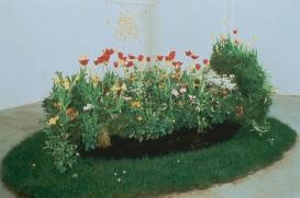 Erogenous Zones-seedlings and metal frame
